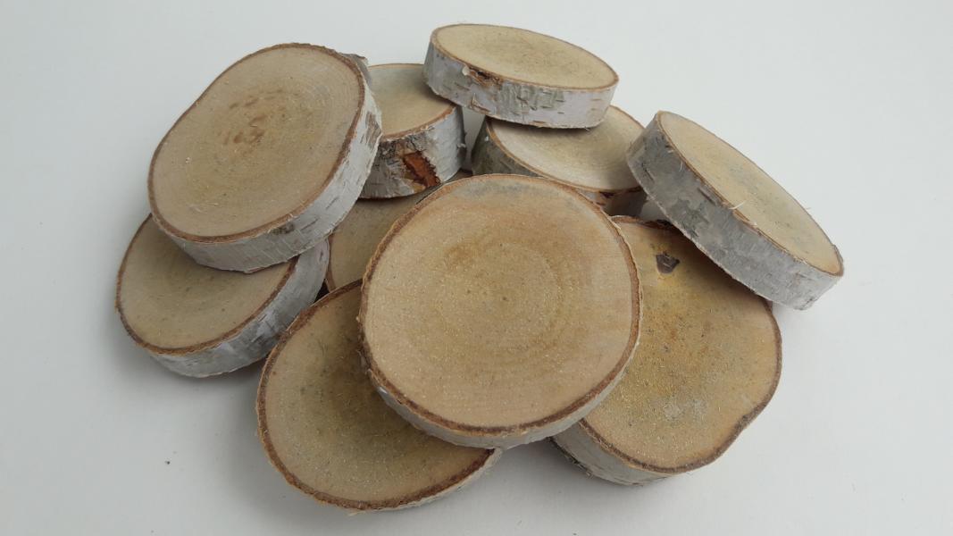 Birkenholz-Baumscheiben
