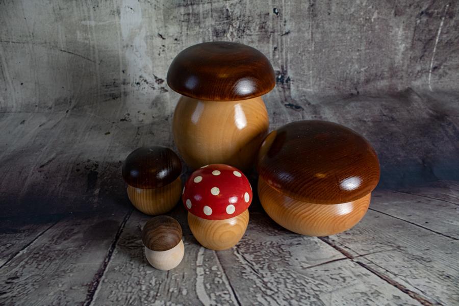 Holz-Pilze