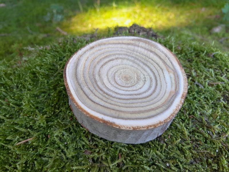 Essigbaum-Baumscheiben